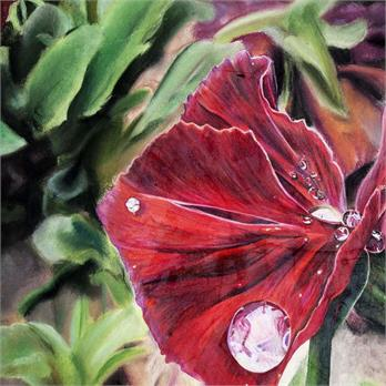 Crimson Raindrop by Gloria S.