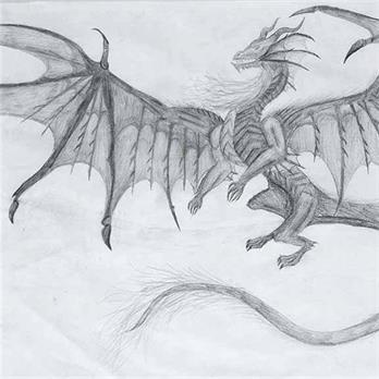 Dragon by Riely H.